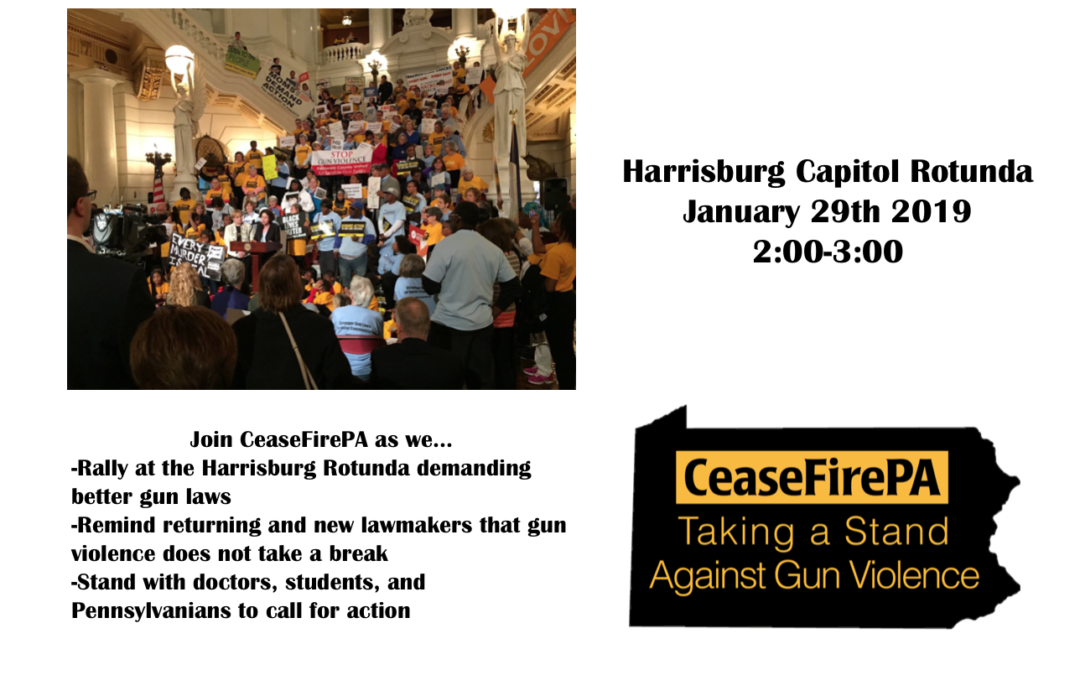 Join CeaseFirePA at our Rally for Action